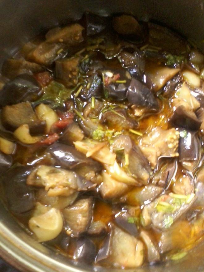 salsa stew (2)