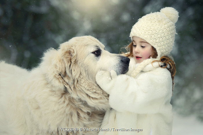 Best of Friends 🌨 A Winter Tale